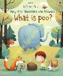 What is Poo? : Lift-The-Flap...
